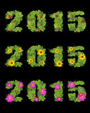 Date 2015 is lined with green leaves berries and flowers Stock Image