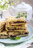 Date and oat bars Stock Photography