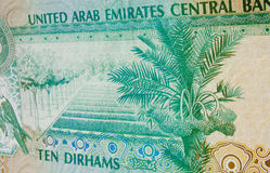 Date Palm banknote United Arab Emirates Stock Images