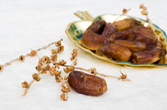 Date palm. Dates fruit on golden tray stock images
