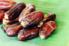 Date palm fruit Stock Photos