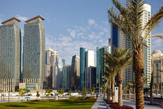 Date palms and Doha towers Royalty Free Stock Photos