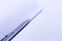 Datebook with a pen. A metallic pen located on a opened datebook Royalty Free Stock Photo