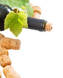 Bottle corks and bottle on the white background Stock Photos