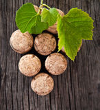 Dated wine bottle corks on the wooden background Royalty Free Stock Photos