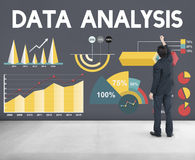 Datenanalyse-Prozentsatz-Geschäfts-Diagramm-Konzept Stockbild