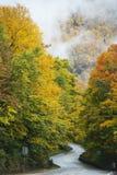Datenbahn im Herbst Lizenzfreies Stockbild