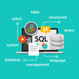 Datenbanksymbolvektor-Illustrationskonzept der strukturierten Abfragesprache Sql lizenzfreie abbildung