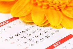Dates. Beautiful shot of dates on calender with flower in background stock photography