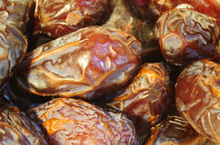 Medjoul Dates. Close up view to Israeli  dates of Medjoul sort - the most luscious and tasty dates Royalty Free Stock Image