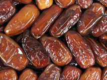 Dates - Deglet nour, closeup Stock Photos