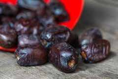 Dates Royalty Free Stock Photo