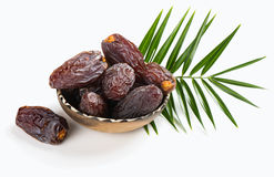Dates fruifs Medjool Stock Image