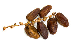 Dates fruit. The sweetest and healthier fruits, dates Royalty Free Stock Image