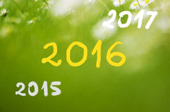 Dates 2015 going to 2016, 2017 handwritten on real natural green background Royalty Free Stock Images