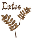 Dates Royalty Free Stock Image