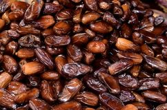 Dates sweet fruit Royalty Free Stock Photos
