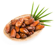 Dates in a tray Stock Image