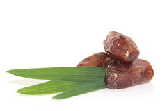 Dates on white Royalty Free Stock Images