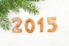 Dati un nuovo anno di 2015 casalinghi su neve con abete Immagine Stock Libera da Diritti