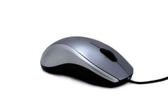dator isolerad mus över white Arkivbild