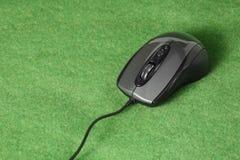 Datormus på gräsbakgrund Arkivbild