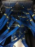Datornätkablar i UTP lapppanel Royaltyfri Fotografi