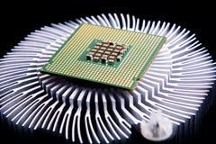 Datorprocessor och element på svart bakgrund royaltyfri foto