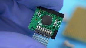 Datorspecialisten i blåa handskar rymmer ett elektroniskt grönt kort arkivfilmer