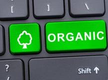 Datortangentbord med den gröna organiska knappen Royaltyfri Bild