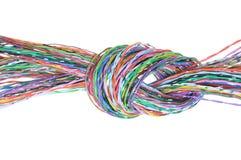 Datortråd med fnuren Royaltyfria Bilder