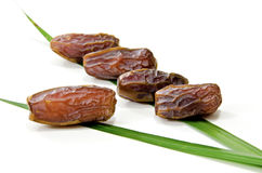 Dattel-Frucht Lizenzfreies Stockfoto