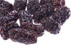dattes noires de porcelaine Image stock