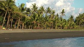 Datu Sumakwel Beach and palm trees during sunset in Philippines. Datu Sumakwel Beach during sunset in the barangy Malandog in Province Antique on Panay island in stock video