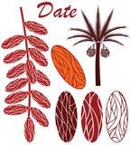 datum vektor illustrationer