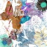 Daub splatter. Colorful daub splatter butterfly garden design Royalty Free Stock Images