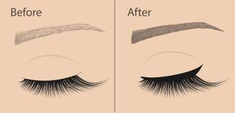 Dauerhaftes Make-up Eyeliner und Korrekturaugenbrauenformung Vorher und nachher Salonverfahren lizenzfreie abbildung