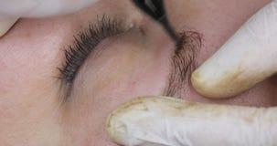 Dauerhaftes Make-up, T?towieren von Augenbrauen Das Cosmetologistzutreffen bilden stock footage