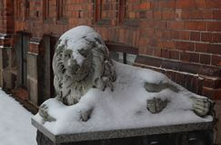 Daugavpils, Latvia, Europe. Snow covered on the lion statue. Winter is one of the best times to go in long walk. Cold temperatures. Daugavpils, Latvia, Europe royalty free stock image