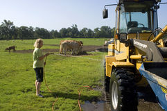 Daughter of farmer working on farm, Netherlands Stock Photo