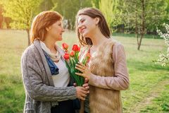 Daughter gives her senior mother tulips. Mother`s day present. Family values royalty free stock images