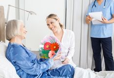 Daughter Giving Bouquet To Sick Mother At Nursing Royalty Free Stock Photography