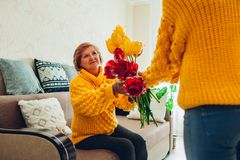 Daughter giving her mother bouquet of flowers at home. Mother`s day present. Daughter giving her mother bouquet of flowers at home. Mother`s day gift royalty free stock photo