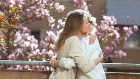 Daughter hugs an elderly mother against the background of a blossoming magnolia. Mother and daughter congratulate each stock footage