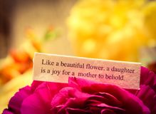 Daughter Love Royalty Free Stock Images