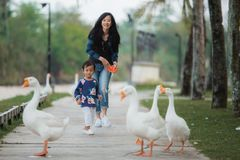 Daughter and mother enjoy playing with goose. Daughter and mother enjoy playing with the goose in the farm stock image
