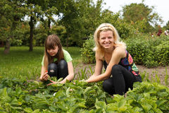 Daughter and mother is working in garden Stock Photo