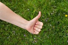 Daumen oben auf grünem Gras Lizenzfreies Stockfoto