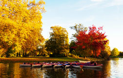 Daumesnil湖在秋天, Vincennes森林,巴黎,法国 免版税库存照片