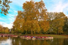 The Daumesnil lake in autumn , Vincennes forest,Paris, France. The Daumesnil lake is the largest lake in bois de Vincennes ,Paris, France and poular destination Royalty Free Stock Photography
